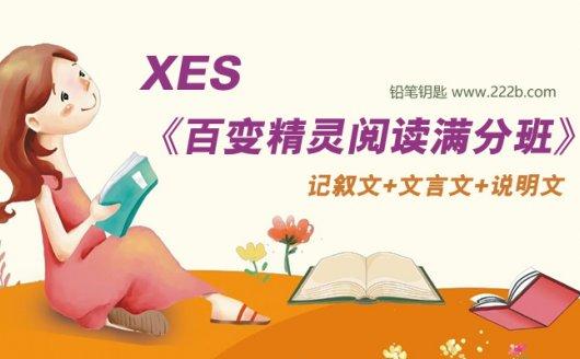 《XES百变精灵阅读满分班》小学语文阅读技巧全20讲 百度云网盘下载