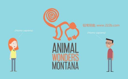 《Animal Wonders》孩子学英文涨知识系列科普视频 百度云网盘下载