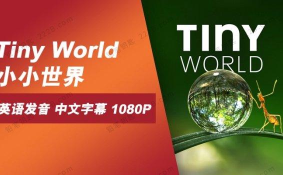 《Tiny World小小世界》第一季6集大自然科普纪录片 百度云网盘下载