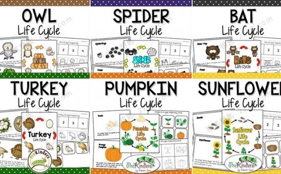 《Fall Life Cycle Science》全6册生命自然科学英文作业纸PDF 百度云网盘下载