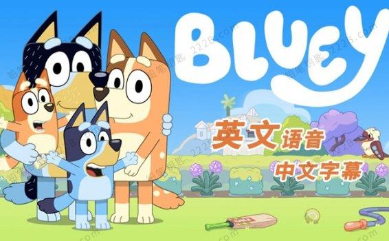 《布鲁伊一家Bluey》第一季全52集英文语音中文字幕MP4视频 百度云网盘下载